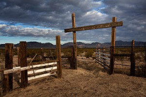 Cattle pen in dry rural landscape